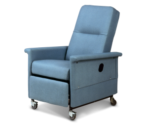 Surprising Recliners Champion Healthcare Seating Theyellowbook Wood Chair Design Ideas Theyellowbookinfo